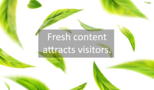 Fresh Content Attracts Visitors, upload new content regularly