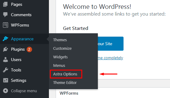 Click Astra Options in WordPress
