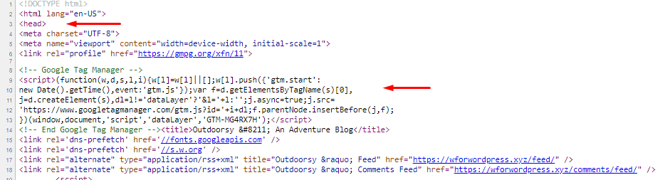 Google tag manager head code in page source code